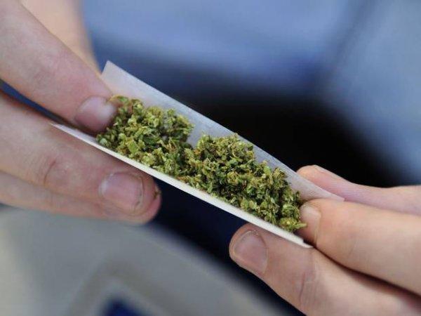 Proposta di legge sulla legalizzazione della cannabis
