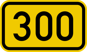 300 giorni di governo Letta