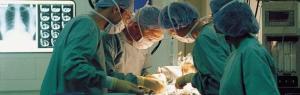 Il Senato approva in via definitiva il ddl Palumbo sul trapianto di organi tra i vivi