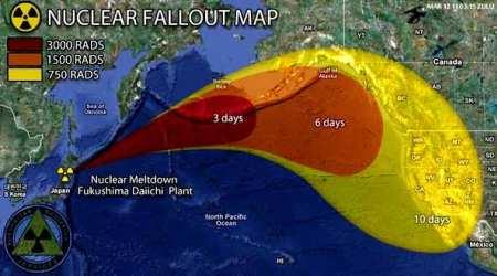 Disastro di Fukushima: gestione dei danni