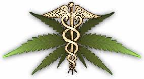 Marijuana per uso medico: scontro tra governo USA e scienza