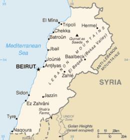 Giordania e Siria si schierano con il Libano.