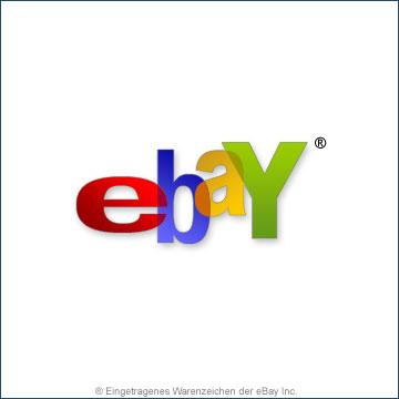Pirateria su eBay, 18 denunce