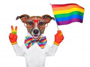 Paesi gay friendly: l'Italia non è messa male.