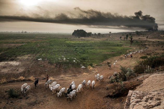 """L'allarme dell'Onu: """"Il cambiamento climatico aumenterà fame e migrazioni""""."""