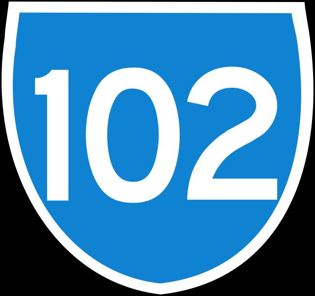 102 giorni di governo Fanfani VI