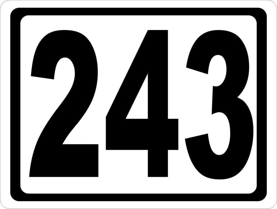 243 giorni di governo Cossiga