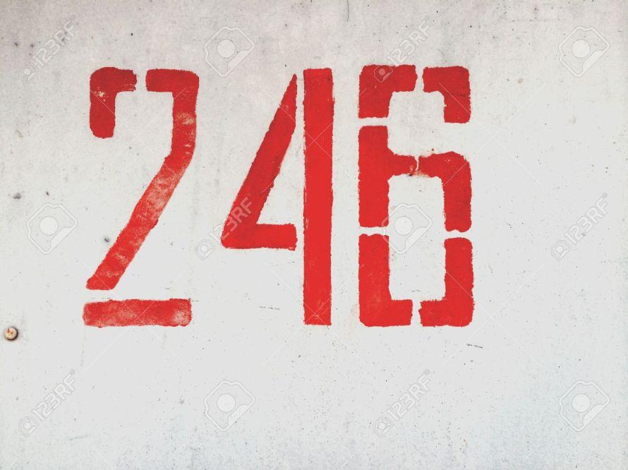 246 giorni di governo Fanfani V