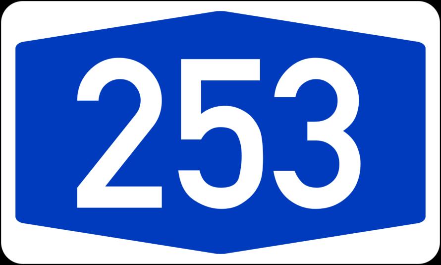 253 giorni di governo Forlani