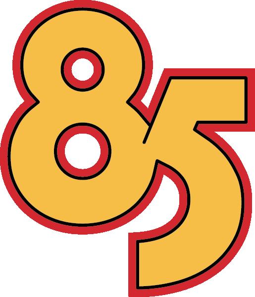 85 giorni di governo Depretis II